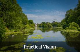 Practical Vision